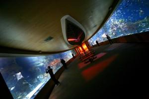Ciudad de las artes y oceanografic